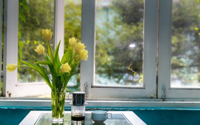 How Do You Know If It Is Time To Replace Your Windows?